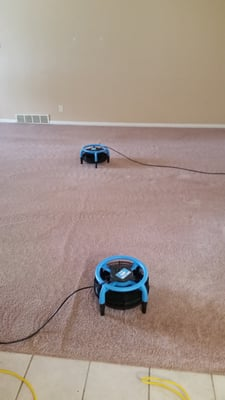 Blough S Carpet Cleaning 1865 M 139 Serving Berrien Allegan And Van Buren Counties Benton Harbor Mi Rug Cleaners Mapquest