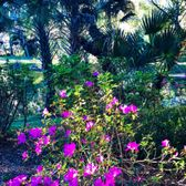 Photo Of Mead Botanical Garden   Winter Park, FL, United States. Lots Of