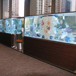 Clear Waters Aquarium Maintenance & Design - (New) 16 Photos