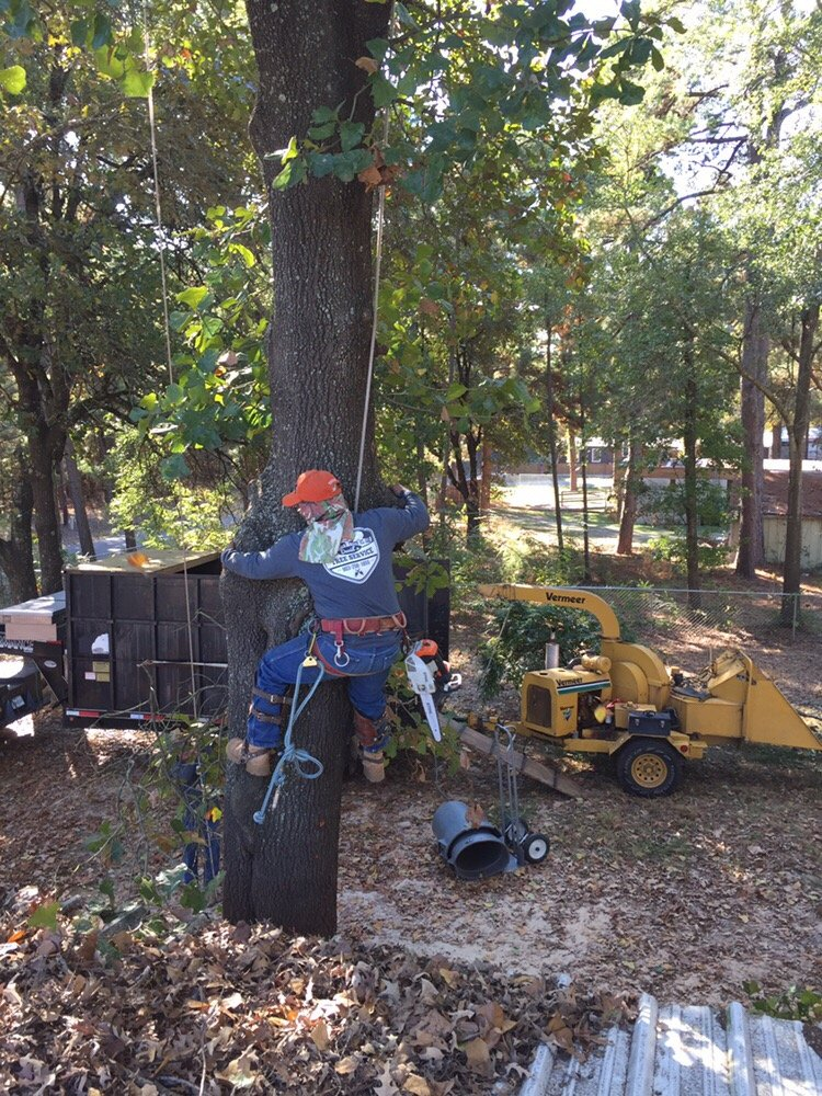 David's Tree Service: 1502 Graham Dr, Tyler, TX