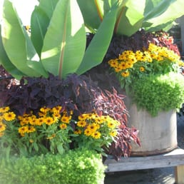 Photo Of Sunnyside Gardens   Minneapolis, MN, United States. Custom  Sunnyside Containers