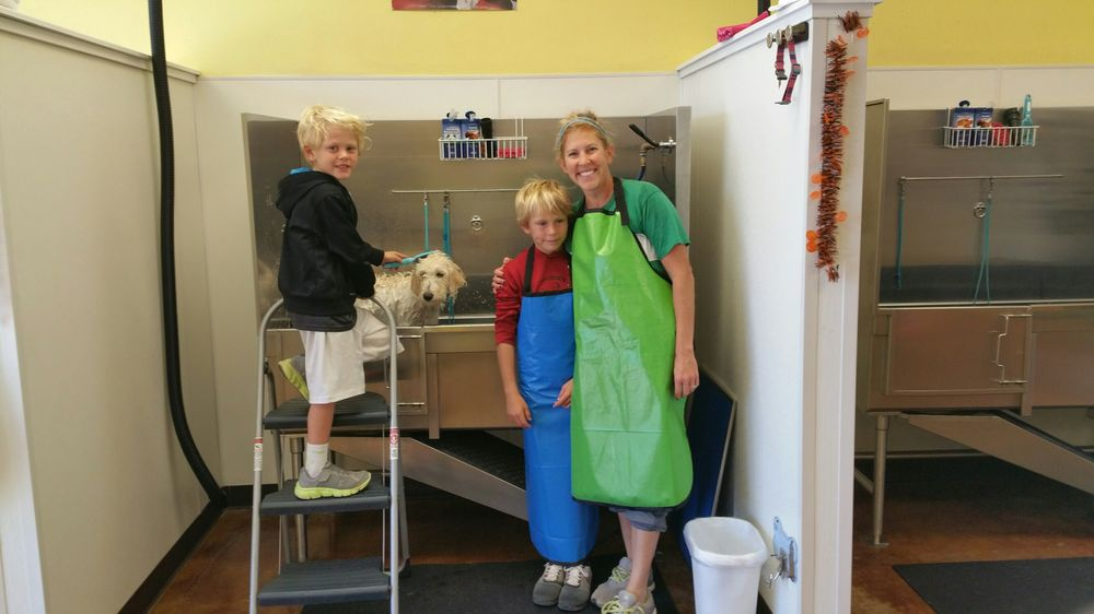 Bark 'N Paws: 1267 N Steamboat Dr, Fayetteville, AR