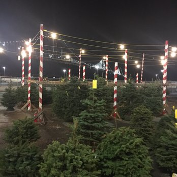 Photo of Delancey Street Christmas Tree Lot - San Francisco, CA, United  States - Delancey Street Christmas Tree Lot - 16 Photos & 21 Reviews