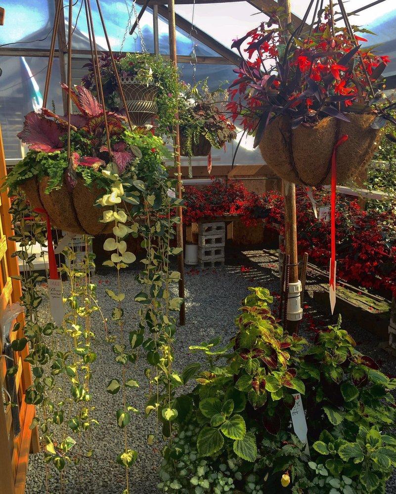 Sunnyside Nursery - 42 Photos & 25 Reviews - Nurseries & Gardening ...
