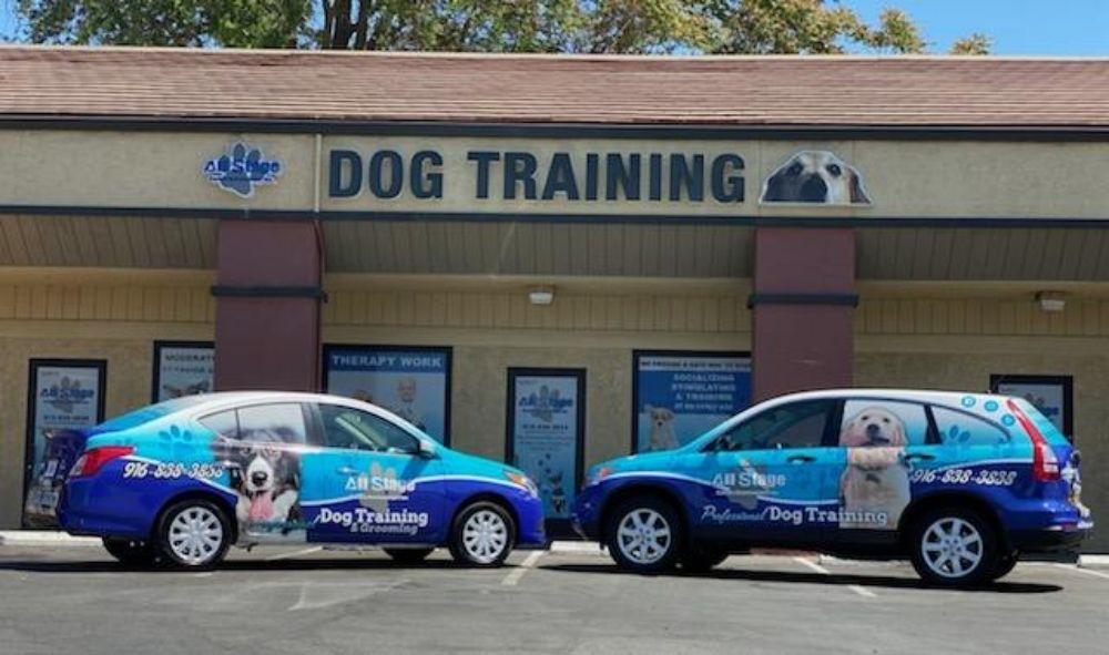 All Stage Canine Development: 5948 Auburn Blvd, Citrus Heights, CA