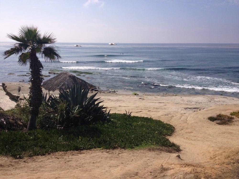 Photos For Windansea Beach Yelp