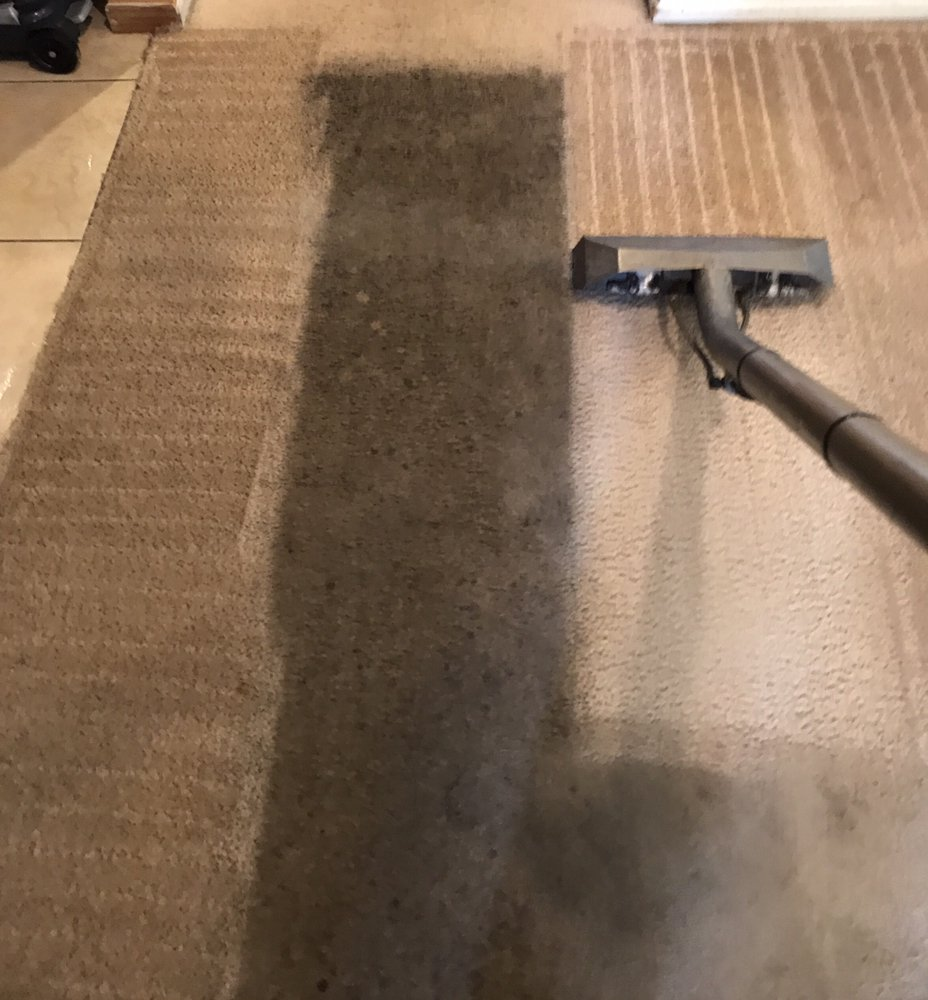 World Class Carpet Cleaning