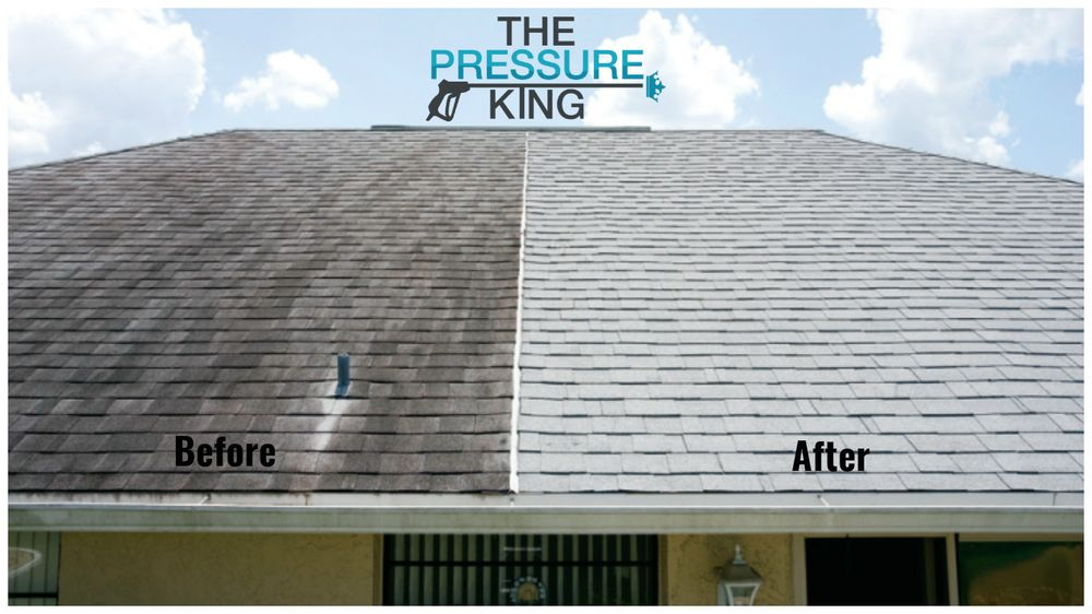 The Pressure King 10 Reviews Pressure Washers