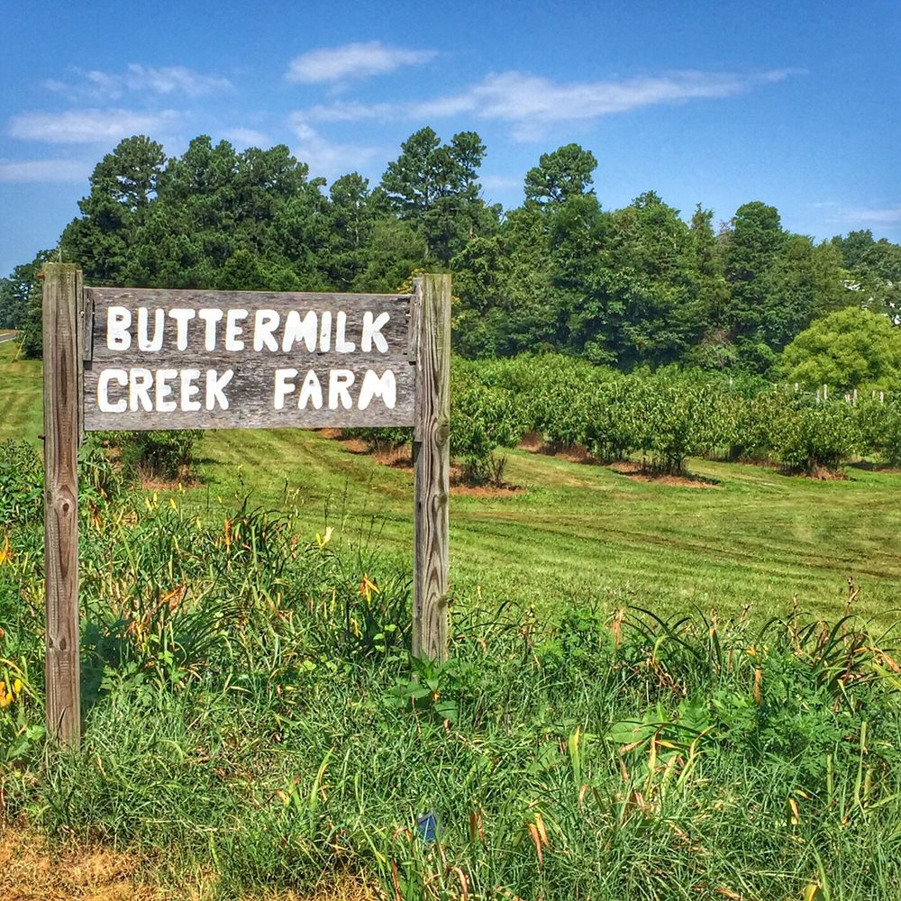 Buttermilk Creek Farm: 1905 Gwyn Rd, Burlington, NC