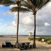 The Photo Of Fort Lauderdale Beach Park Fl United States