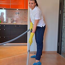 gay house cleaning atlanta ga