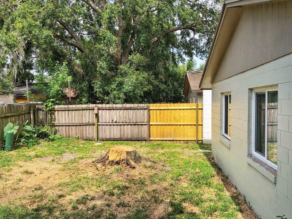 Tree Amigos: 424 E Central Blvd, Orlando, FL