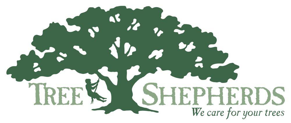 Tree Shepherds: 314 Carlisle Dr, Lake Dallas, TX