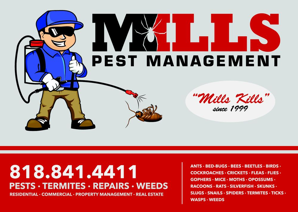 termite inspection companies