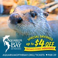 Yelp Reviews for Aquarium Of The Bay - 1961 Photos & 832 Reviews
