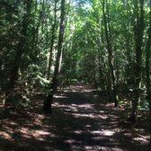 kletterwald grünwald münchen