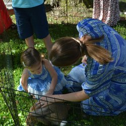 Squeals On Wheels Petting Zoo - 79 Photos & 27 Reviews
