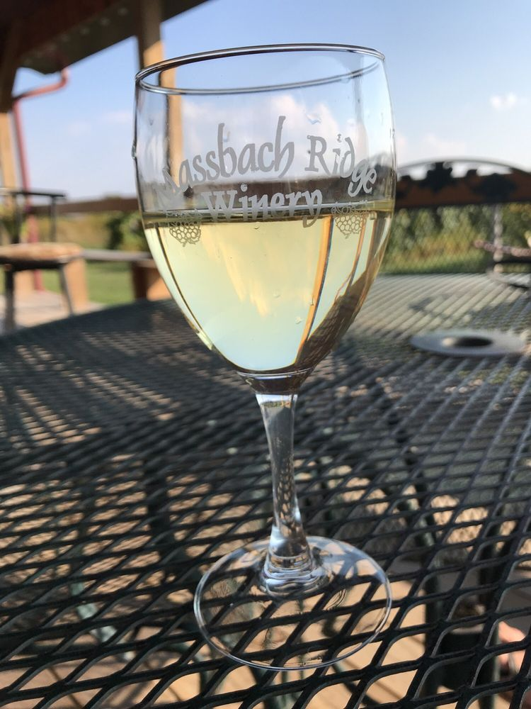 Massbach Ridge Winery: 8837 S Massbach Rd, Elizabeth, IL