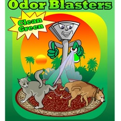 Photo Of Dirt Blasters Carpet Cleaning Atlanta Ga United States Pet Odor