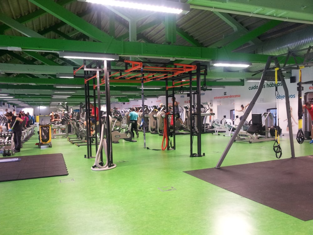 Go fit segalerva gym calle actriz rosario pino 16 for Rosario fitness gimnasio