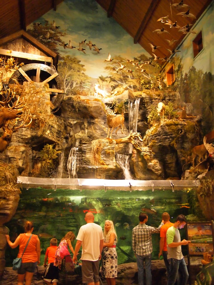 Branson (MO) United States  City new picture : ... Bass Pro Dr, Branson, MO, United States Phone Number Yelp