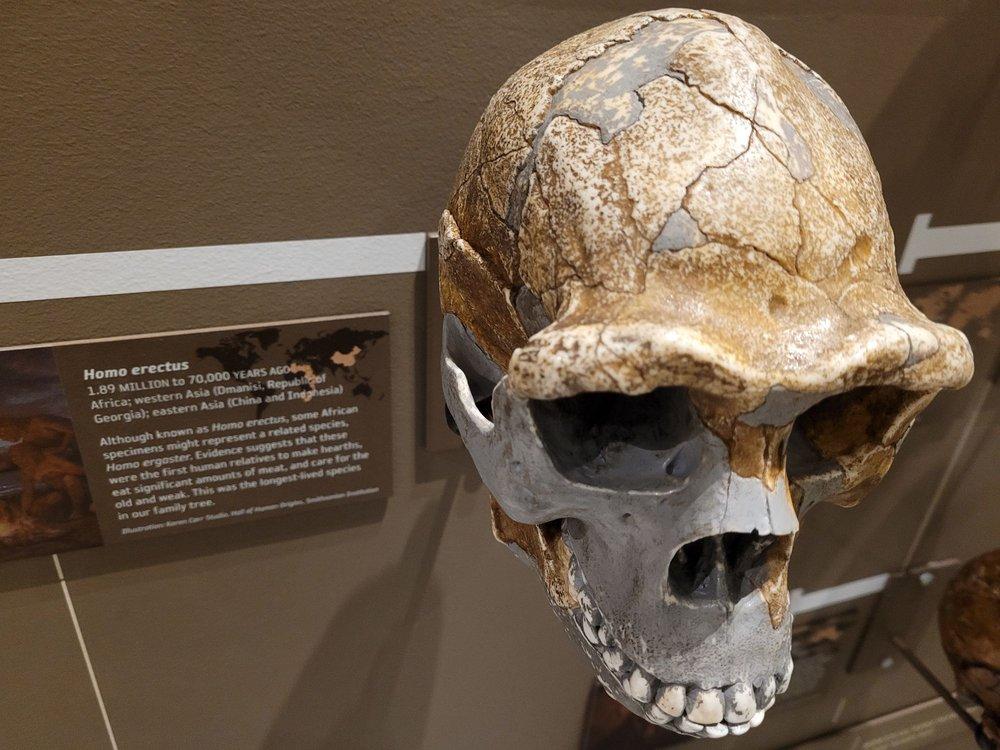Social Spots from Natural History Museum of Utah
