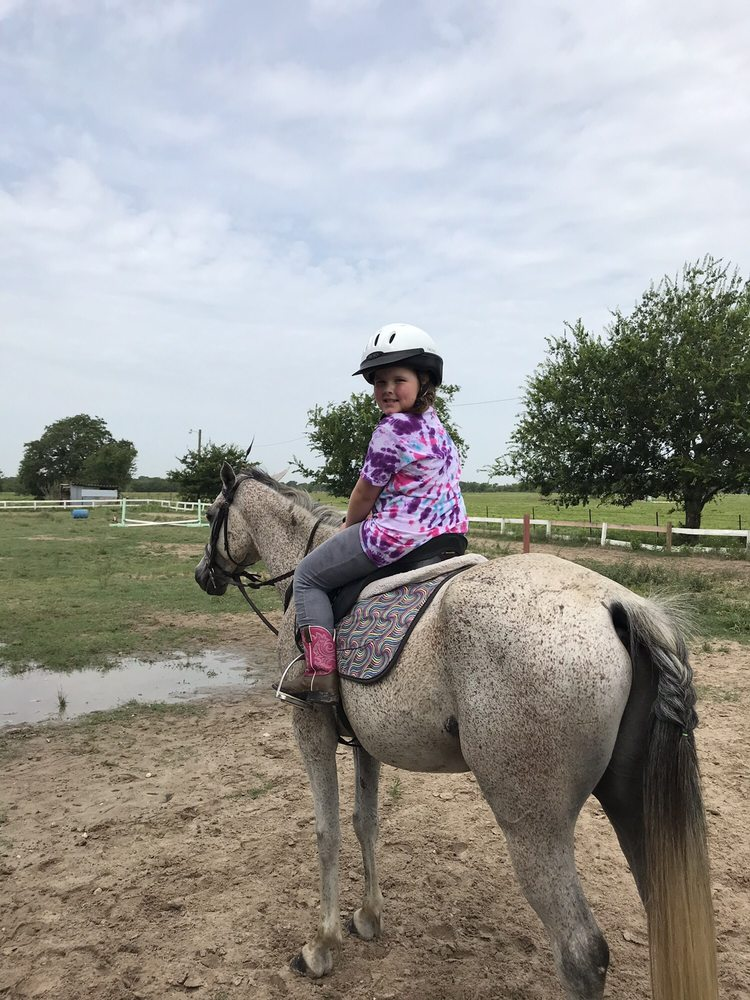 Royal Legend Arabians & Horse Center: 7786 Riley Rd, Bryan, TX
