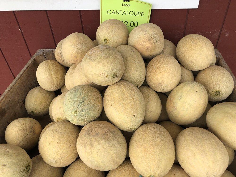 Burkholder's Farm Market: PA-54, Washingtonville, PA