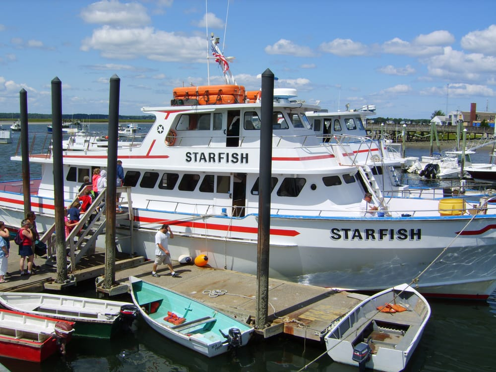 The starfish is used for whale watching trips yelp for Deep sea fishing hampton nh
