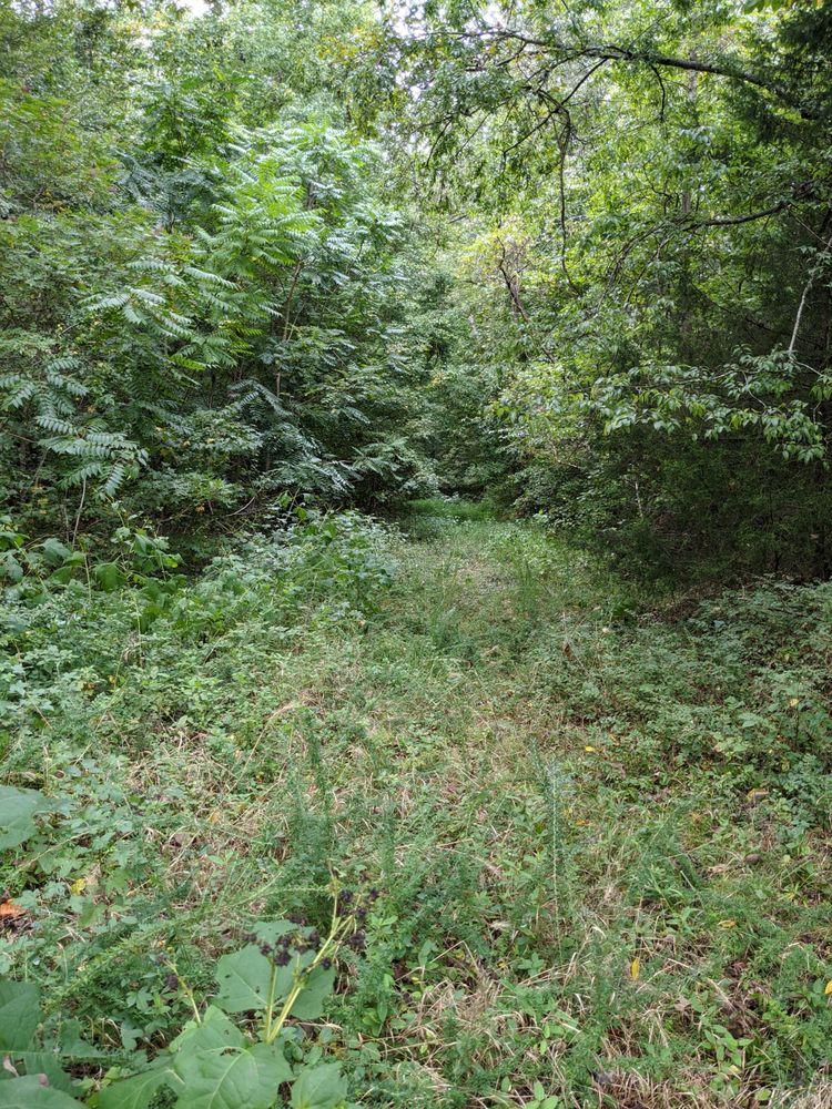 James Ross Wildlife Reservation: York, SC
