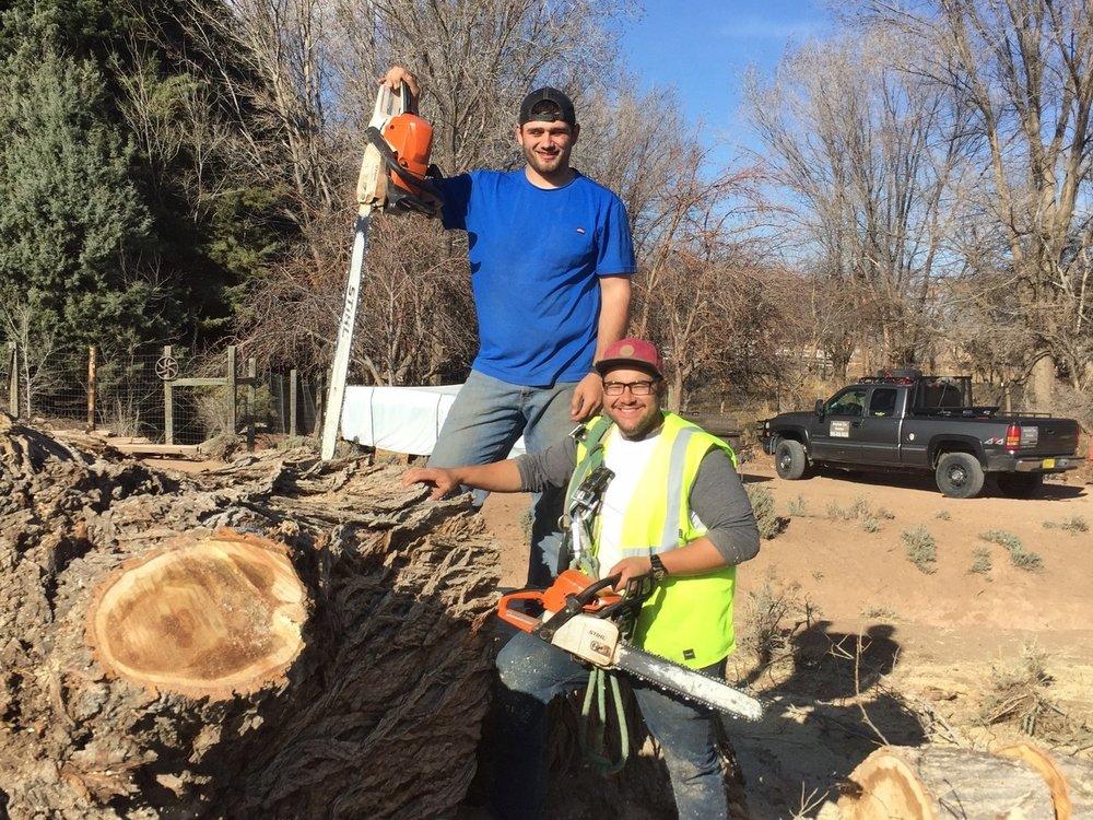 American Tree Services: Albuquerque, NM