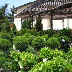 Cedar Grove Garden Center 10 Photos Nurseries Gardening