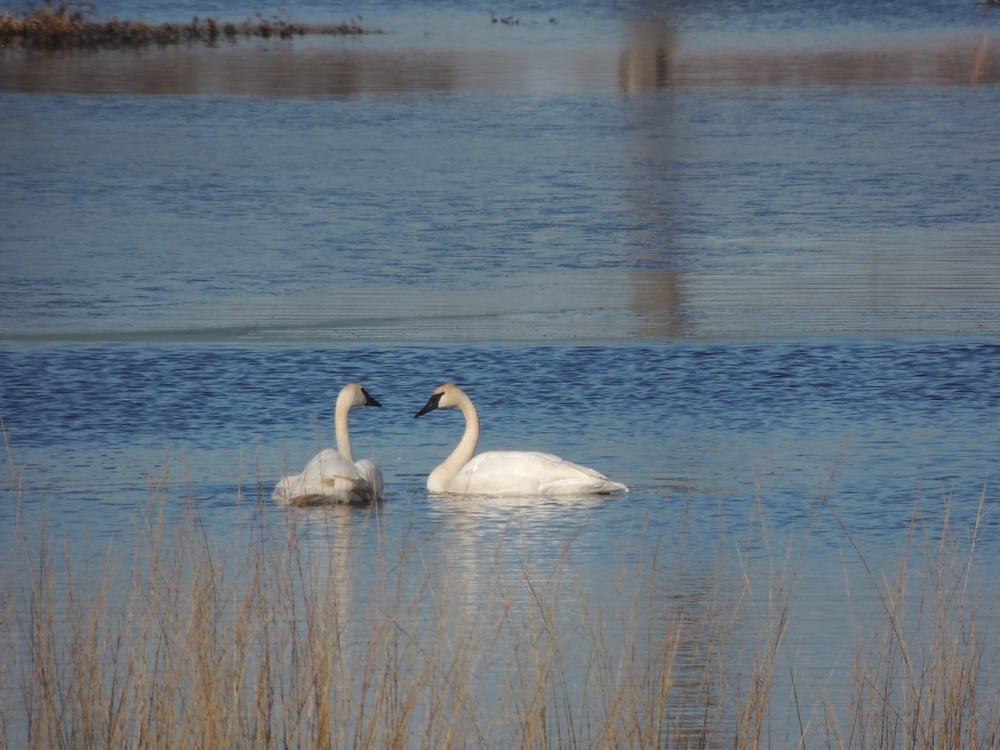 Whitetail Waters Vacation Rental: 65134 Tapani Rd, Ashland, WI