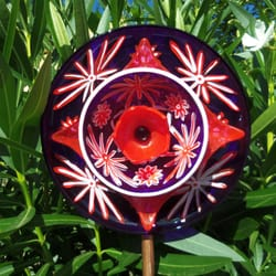 Photo Of Sasafras Glass Garden Flowers   Vacaville, CA, United States.
