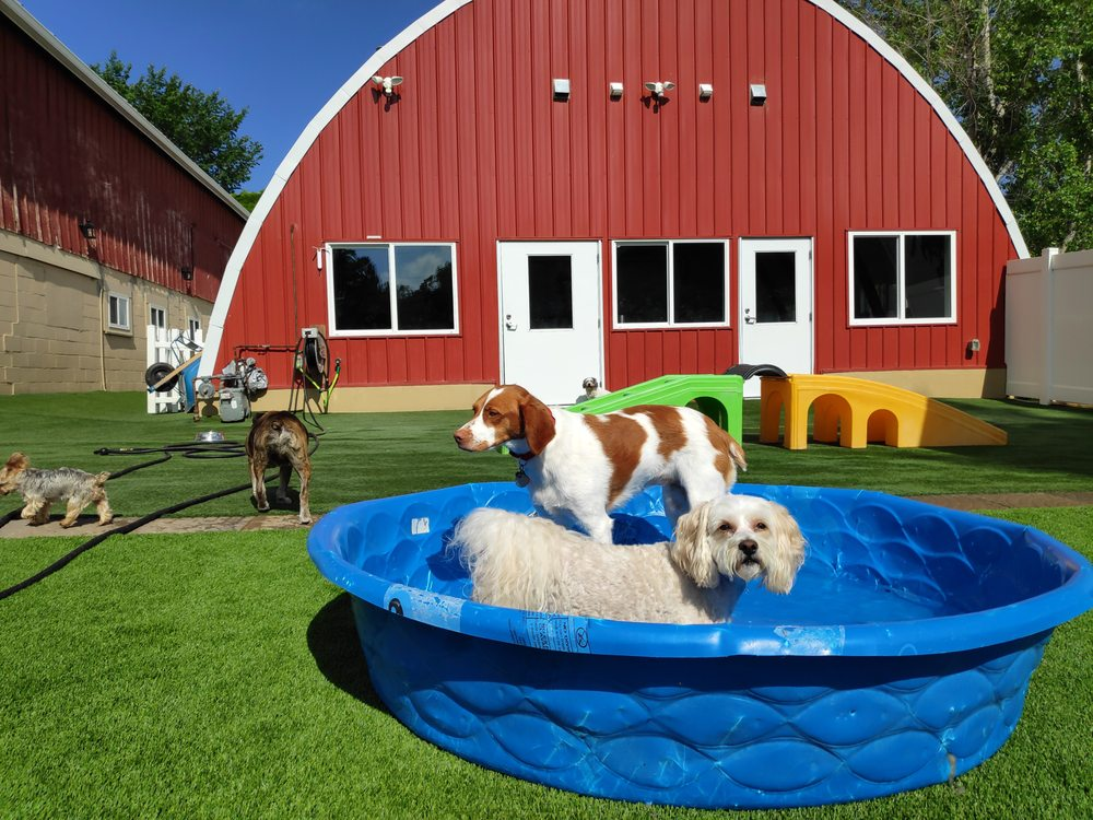 Red Barn Pet Retreat: 19520 Stieg Rd, Corcoran, MN