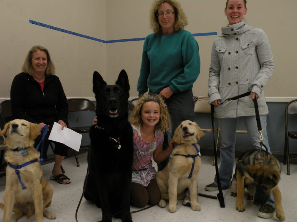 Laura For Dogs: 7323 Village Pkwy, Dublin, CA