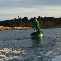 Captain s reel deep sea fishing 13 photos 20 reviews for Deep sea fishing newport