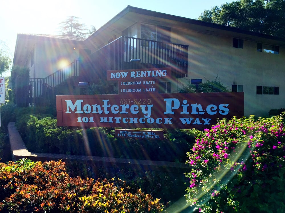 The Pines Apartments Homes Reviews