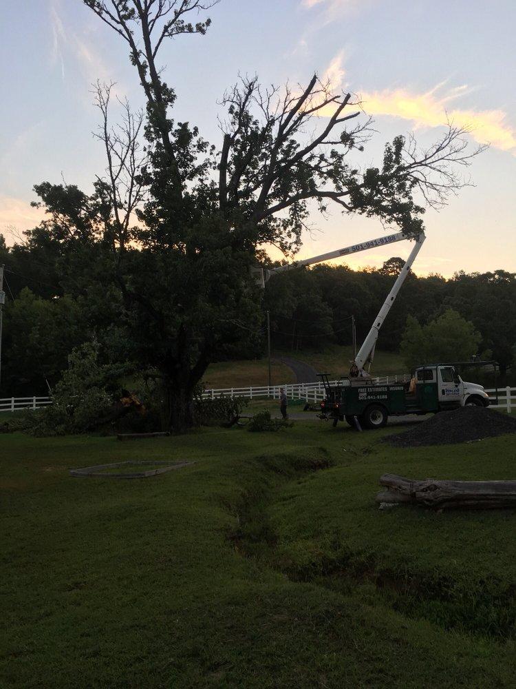 Rowland Tree Service: 250 Friendship Ln, Vilonia, AR