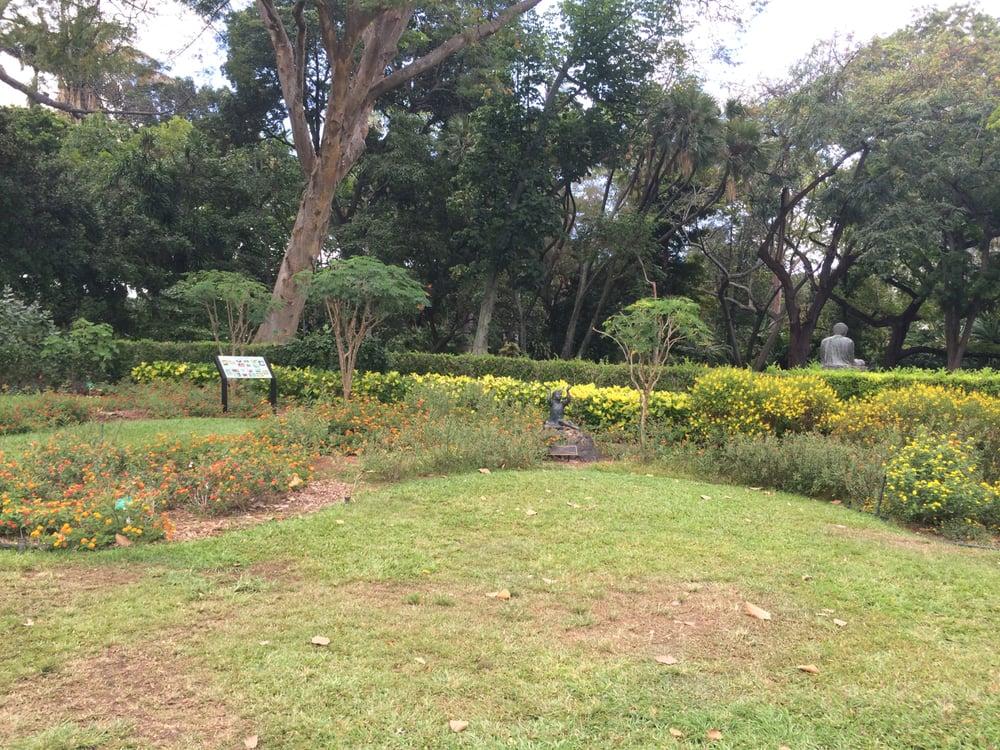 Photos for foster botanical garden yelp for Foster botanical garden honolulu