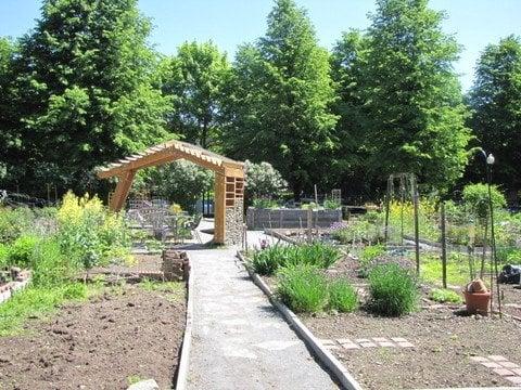 Worcester Street Community Garden: 114 Worcester St, Boston, MA