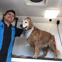 Lucky dawg mobile grooming 45 photos 65 reviews pet groomers photo of lucky dawg mobile grooming torrance ca united states solutioingenieria Gallery