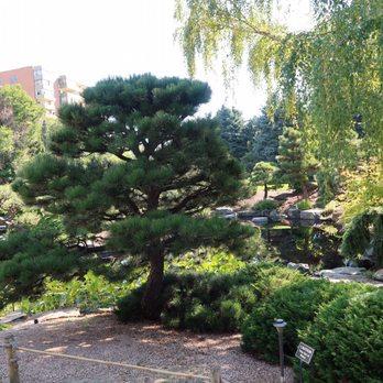 Denver Botanic Gardens - 2130 Photos & 546 Reviews - Botanical ...