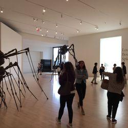 San Fran Modern Art Museum