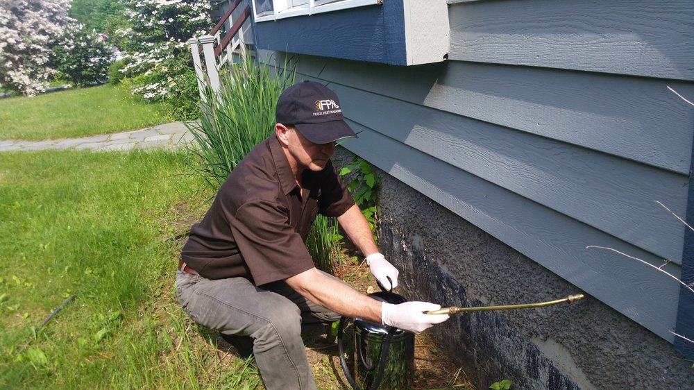Fleck Pest Management: Accord, NY