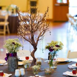 Swell Top 10 Best Table And Chair Rentals In Tampa Fl Last Home Interior And Landscaping Mentranervesignezvosmurscom