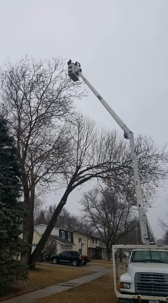 Pitts Lawn & Tree Service: Ames, IA
