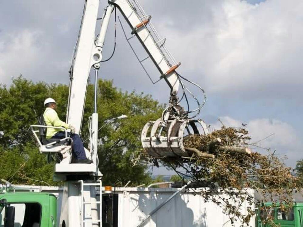 Take Down Tree Services of WNY: 3766 E Main Street Rd, Attica, NY