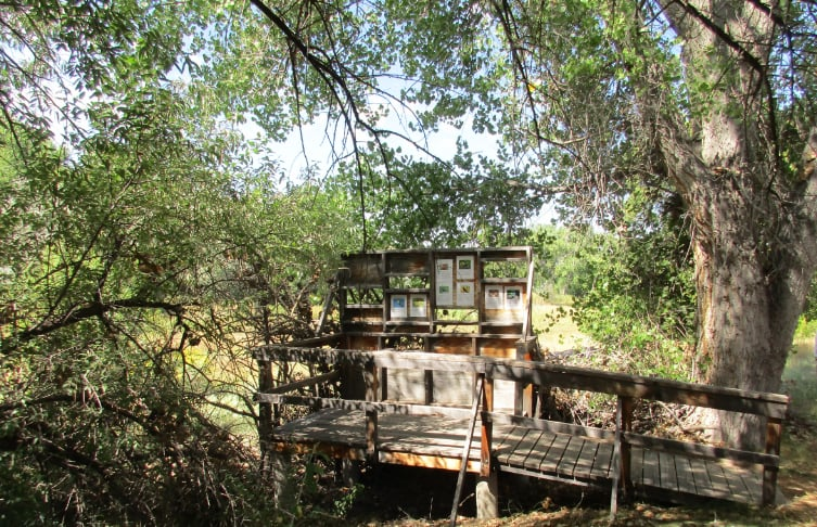 Leonora Curtin Wetland Preserve: 49A W Frontage Rd, Santa Fe, NM
