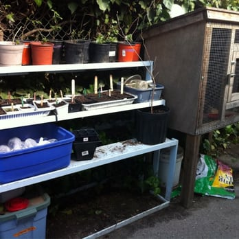 Photo Of Chatham Nursery School Oakland Ca United States En Coupe And
